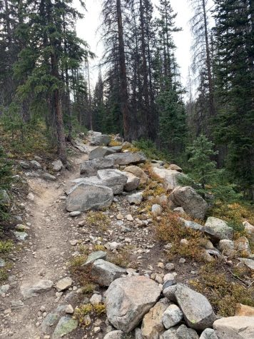 Pictured is a view of the trail going uphill. This is a section of the trail in-between Hunt and Boss lake. It is one of the more rocky sections on the trail.
